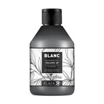 BL042-BLP-BLACK-PROFESSIONAL-VOLUME-UP-SAMPON-300-ML-1