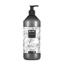 BL043-BLP-BLACK-PROFESSIONAL-VOLUME-UP-SAMPON-1000-ML-1